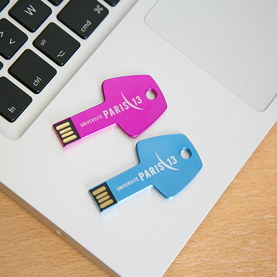 Clés USB 8 Go Université Paris 13